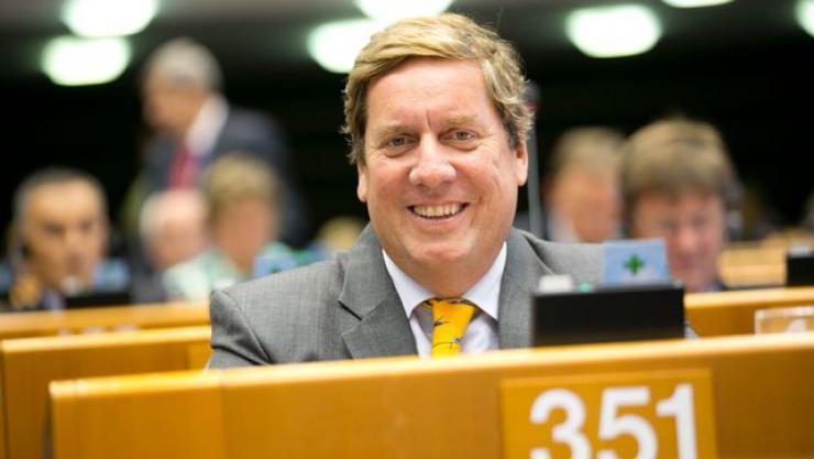 El Parlamento Europeo respalda a los productores canarios de plátano ante las importaciones de banana latinoamericana